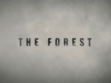 The Forest - Jarid Boyce's  storyboard art