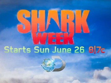 Shark Week - Lidat Truong's  storyboard art