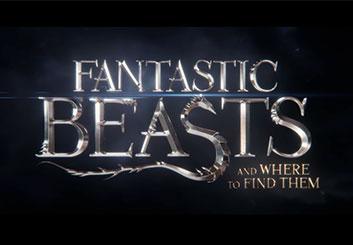 Fantastic Beasts - Darek Gogol's  storyboard art