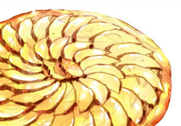 Nob Yamashita's Food storyboard art