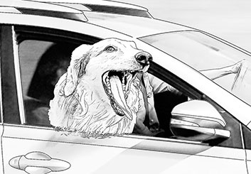 Robert Kalafut*'s Wildlife / Animals storyboard art