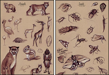Stefania Gallico's Wildlife / Animals storyboard art