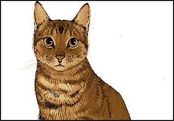 Lee Milby's Wildlife / Animals storyboard art