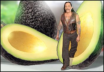 David Case's Likenesses storyboard art