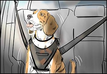 David Reuss's Wildlife / Animals storyboard art