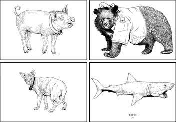 Evan Yarbrough*'s Wildlife / Animals storyboard art