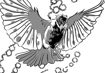 Kensuke Okabayashi's Characters / Creatures storyboard art