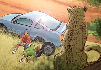 Angus Cameron's Wildlife / Animals storyboard art