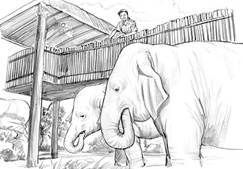 Al Evcimen's Wildlife / Animals storyboard art