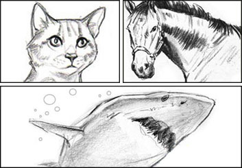 John Killian Nelson's Wildlife / Animals storyboard art
