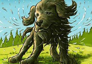 Kaleo Welborn's Wildlife / Animals storyboard art